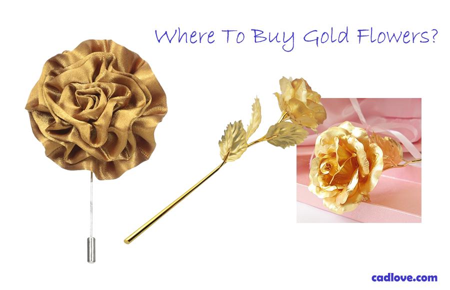 Where-To-Buy-Gold-Flowers---medium
